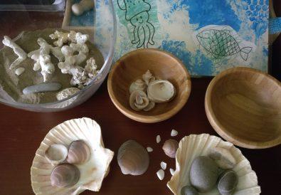 Madres Desterradas Rincon y Actividades Caseras Experimentos